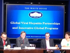 Global Hepatitis Panel