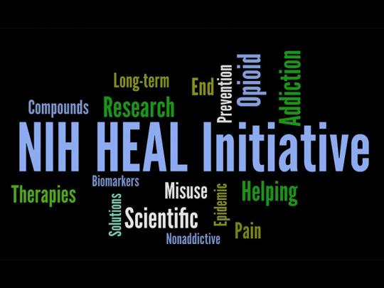 Word cloud including NIH HEAL Initiative, Therapies, Research, Addiction, Opioid, Scientific, Misuse, Helping